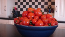 Doolin Tomatoes