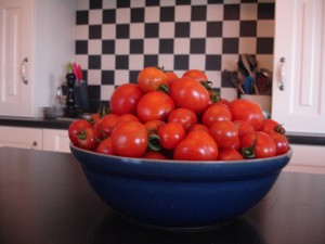 tomatoe2-sm