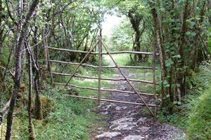 gate2-300x200